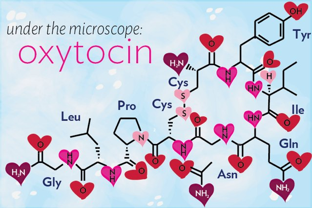 [Image: under-the-molecule-oxytocin-banner.jpg]